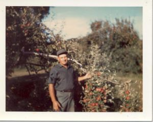 grandpa-in-orchard-1968