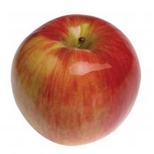 jonathan_apple